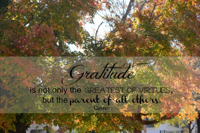 on gratitude www.terilynneunderwood.com