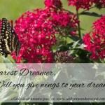 dearest dreamer www.terilynneunderwood.com