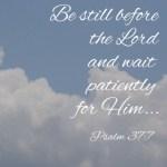 Sunday Scriptures || Psalm 37:7 || www.terilynneunderwood.com/blog