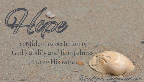 hope || Jeremiah 29:11 || www.terilynneunderwood.com/blog