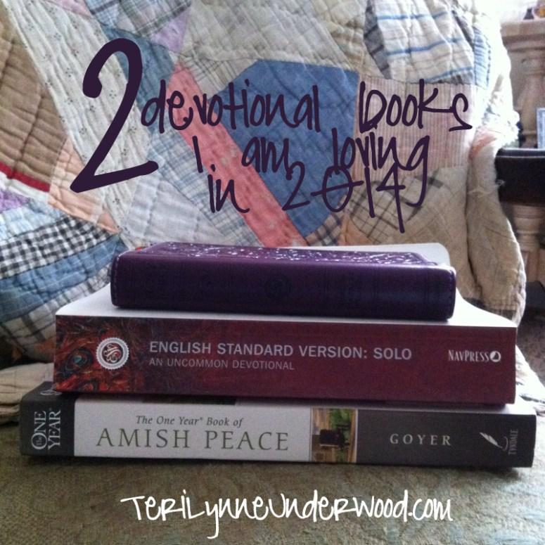 2 devotional books I am loving in 2014 || Teri Lynne Underwood