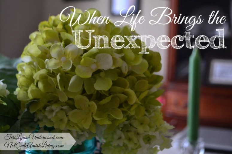 when life brings the unexpected || teri lynne underwood