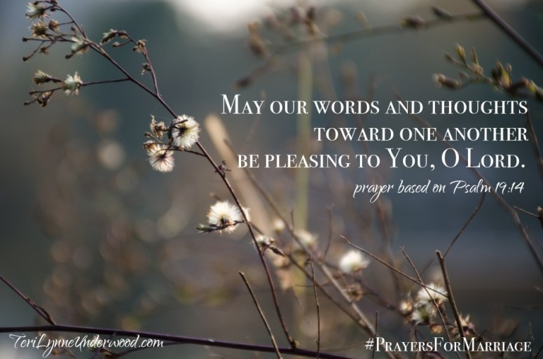 31 Verses to Pray for Your Marriage || Psalm 19:14