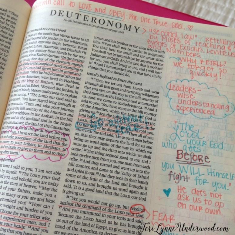 Journaling Bible: Deuteronomy