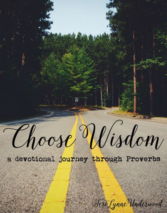 Choose Wisdom: a devotional journey through Proverbs by Teri Lynne Underwood
