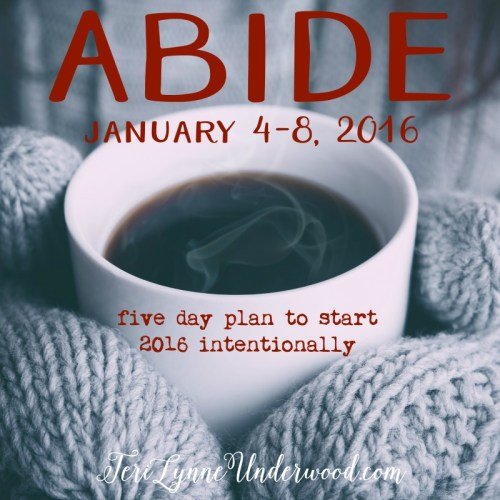 ABIDE: five day plan to start 2016 with intentionality