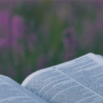 Exploring the Psalms: a seven-week study of the different types of Psalms.