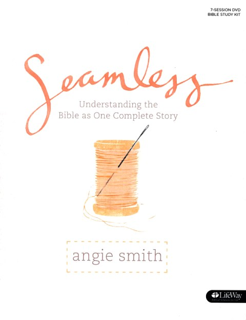Seamless by Angie Smith is a great resource for exploring the way all of Scripture tells one story.  And the teen girl edition is also great.