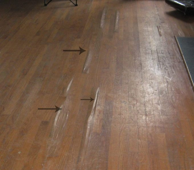 Termite Damage Signs And Control Ceiling Foundation Carpets