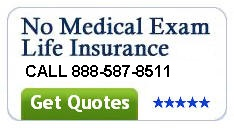 Best rated term life insurance companies