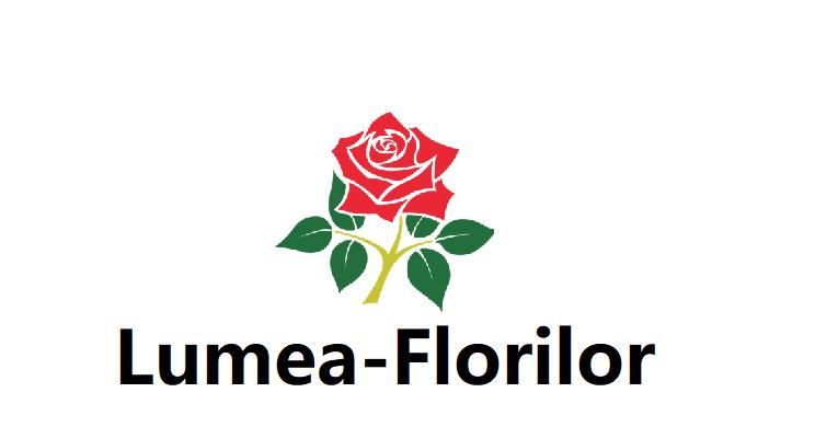 lumea-florilor.ro_