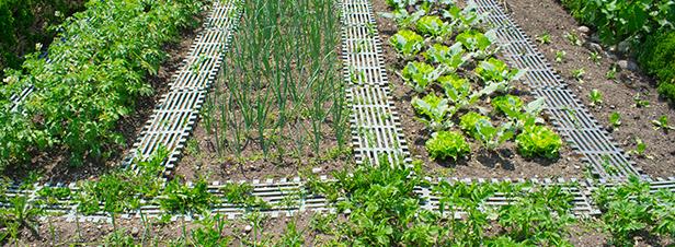 Agriculture bio: le ministre annonce plus d'1 milliard pour le plan 2018-2022
