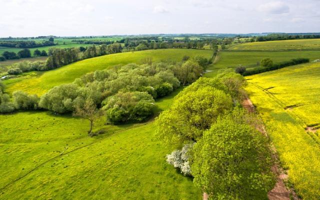 Plan biodiversité: moins de béton, plus de végétation