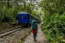 Cruzando com o trem que seguia para Aguas Calientes