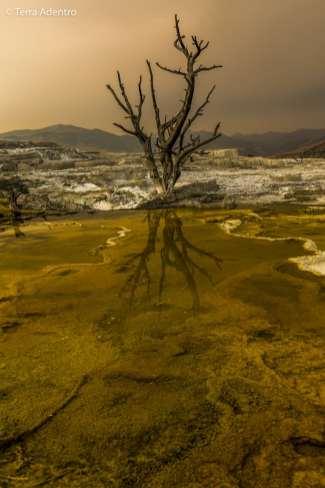 A fumaça das queimadas na região criou uma atmosfera surpreendente na Mammoth Hot Springs
