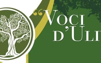 """IV edizione del concorso regionale di arte e poesia """"Voci d'Ulivo"""""""