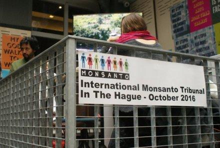 Les tribunaux de la planète (2/4) : Monsanto à la barre