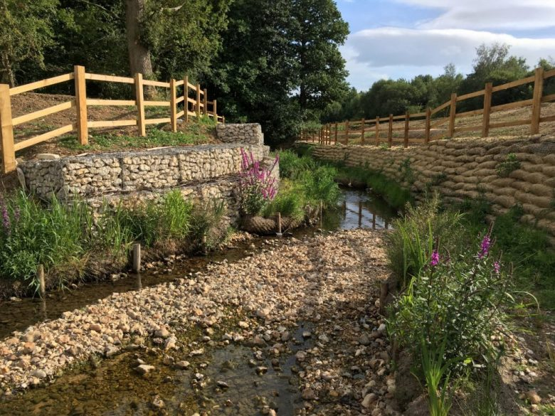 Enhancing biodiversity and reducing flood risk by re-wilding Hermitage Stream, Havant (photo (right): Peter Brett Associates)