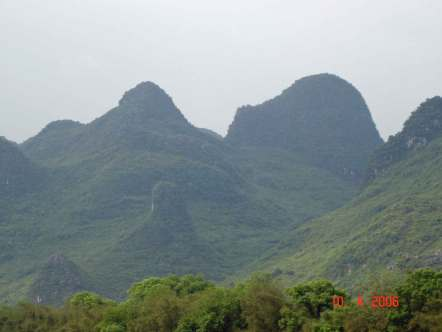 Mountains-covered-in-lush-g