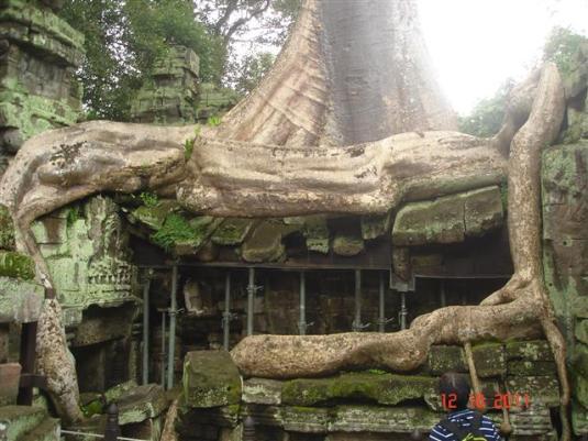 Cambodia4 456