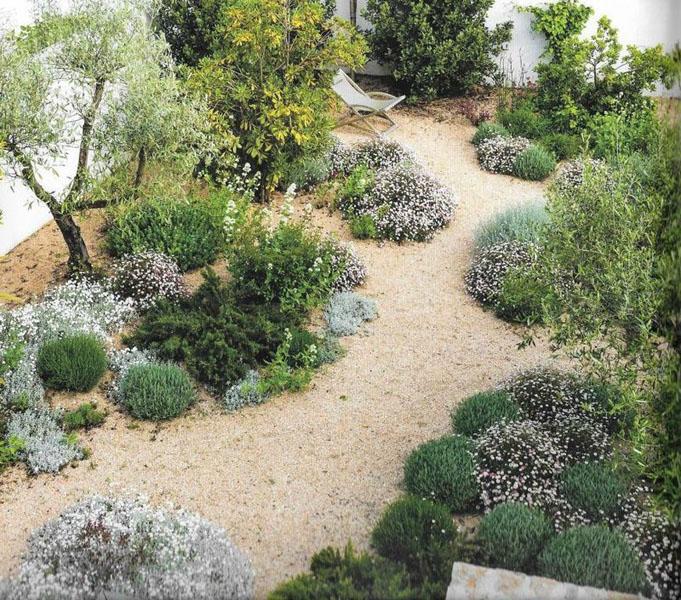 Taille et d'élagage, entretien jardin & parc