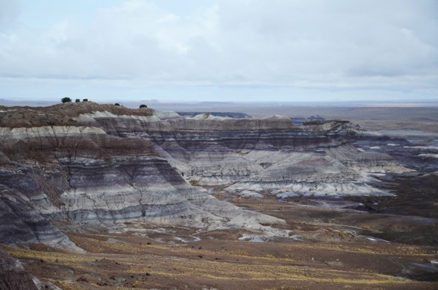 Petrified Forest National Park || terragoes.com