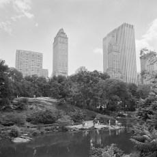 The Park 1 (2012)