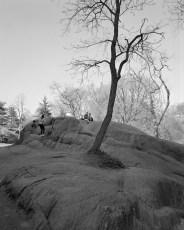 The Park 34 (2013)
