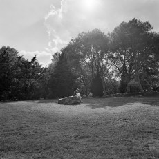 The Park 54 (2012)