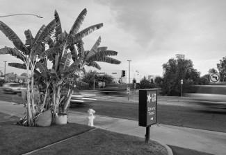 Carl's Jr. Drive Thru, Selma, CA