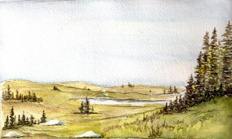 1. Coastal Barrens
