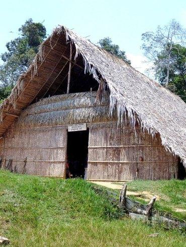 Hut in Brazil rainforest