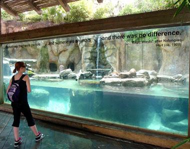 Jacksonville Zoo poetry