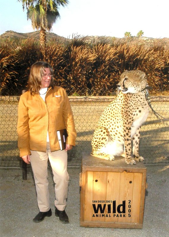Alison Deming and the cheetah