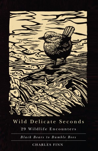 Wild Delicate Sounds by Charles Finn