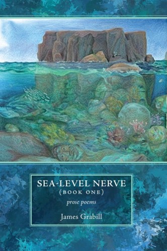 Sea-level Nerve (Book One), by James Grabill