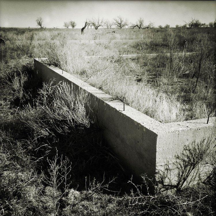 Amache ruins. Photo by Sarah Skeen.