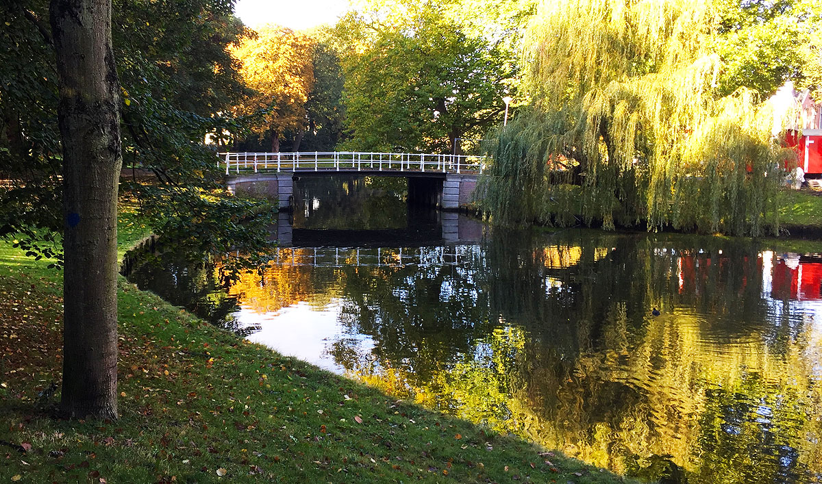Park in Haarlem with bridge