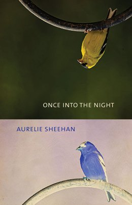 Once into the Night, by Aurelie Sheehan