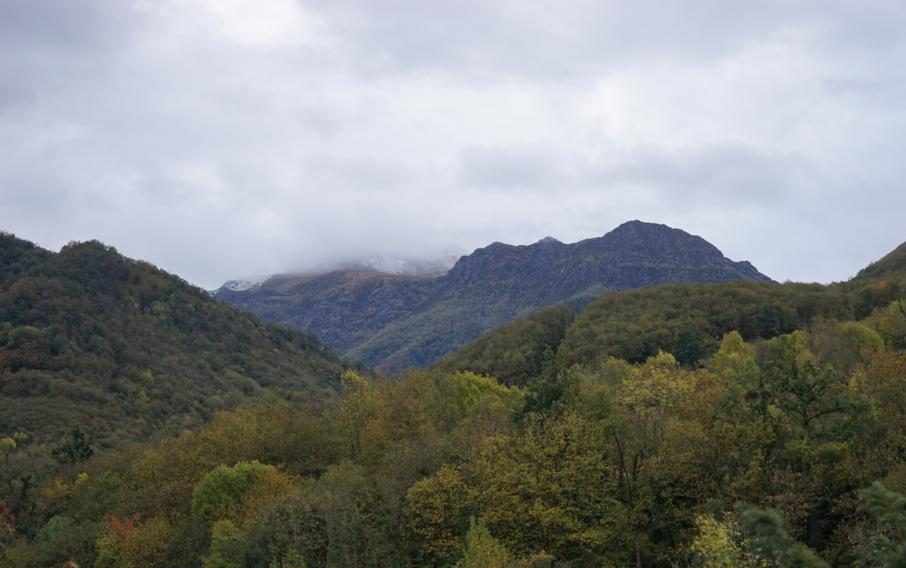 Rain clouds form over the forest. In the mountain, it starts to snow. Photo by Paulina Jenney.