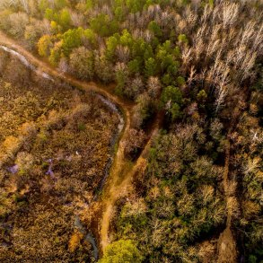 Aerial view of creek, woods, and wetlands