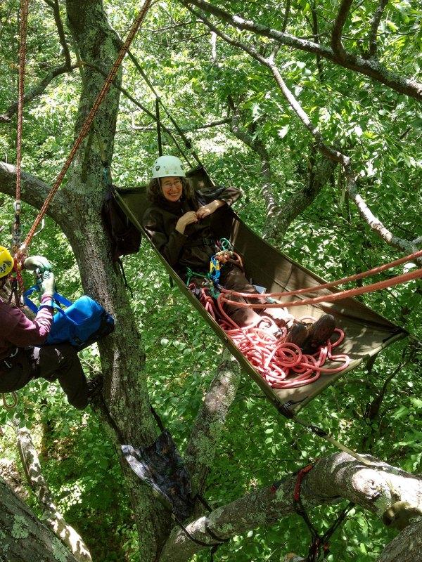Lynda Mapes in 100-year-old oak