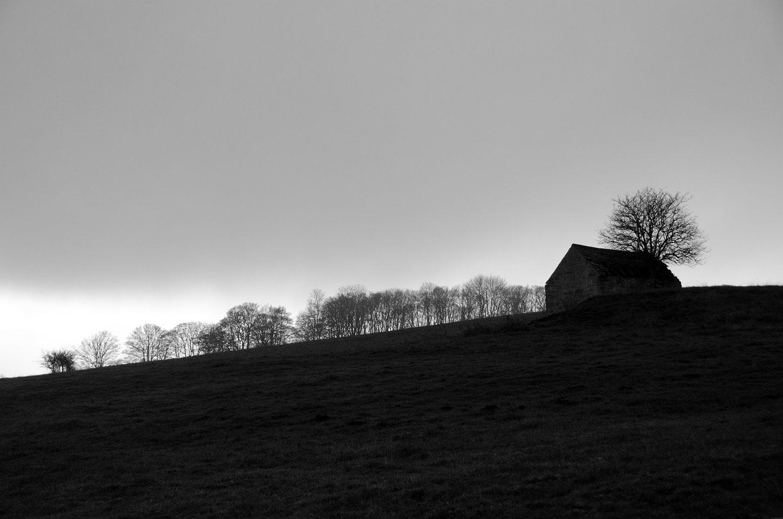 Barn in landscape