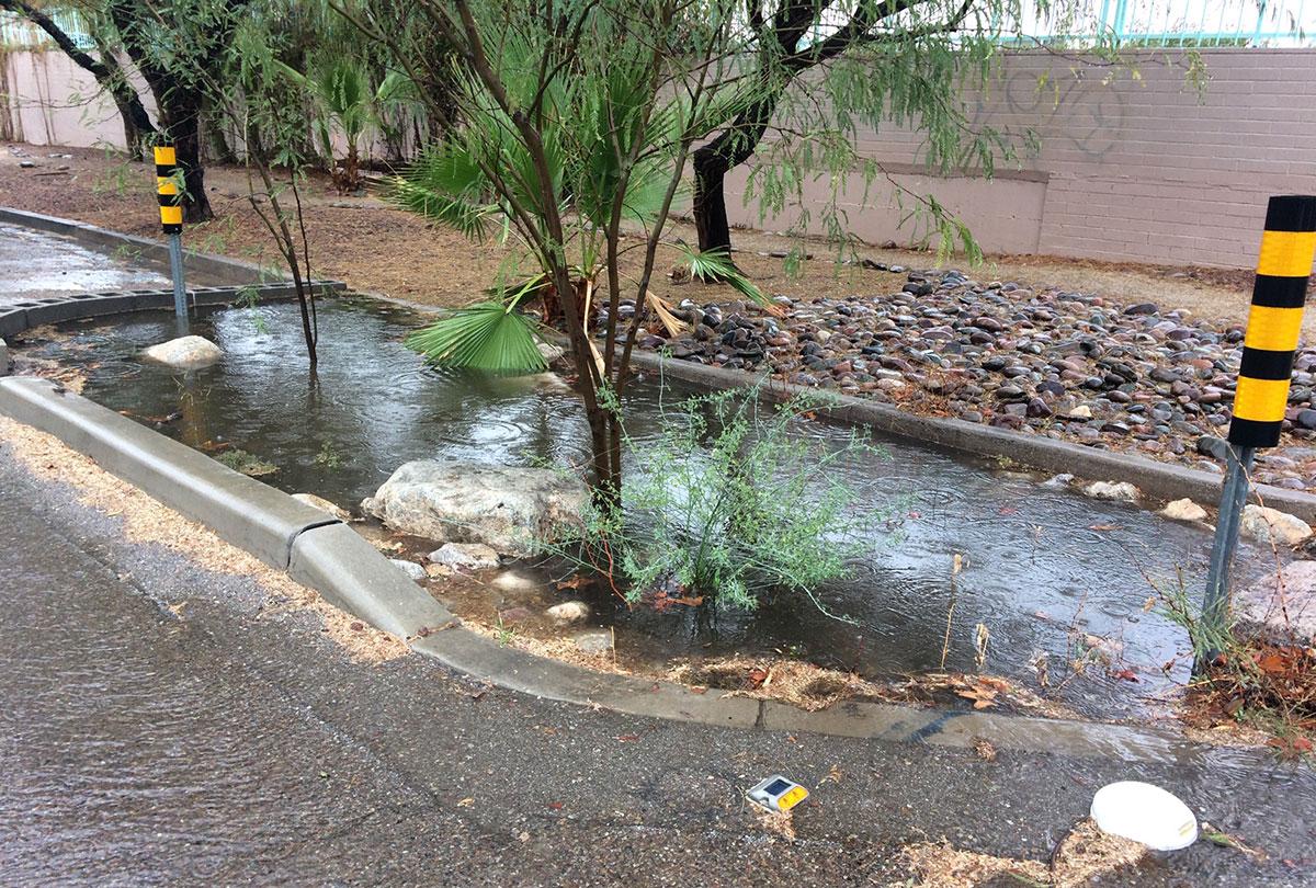 Chicane capturing stormwater