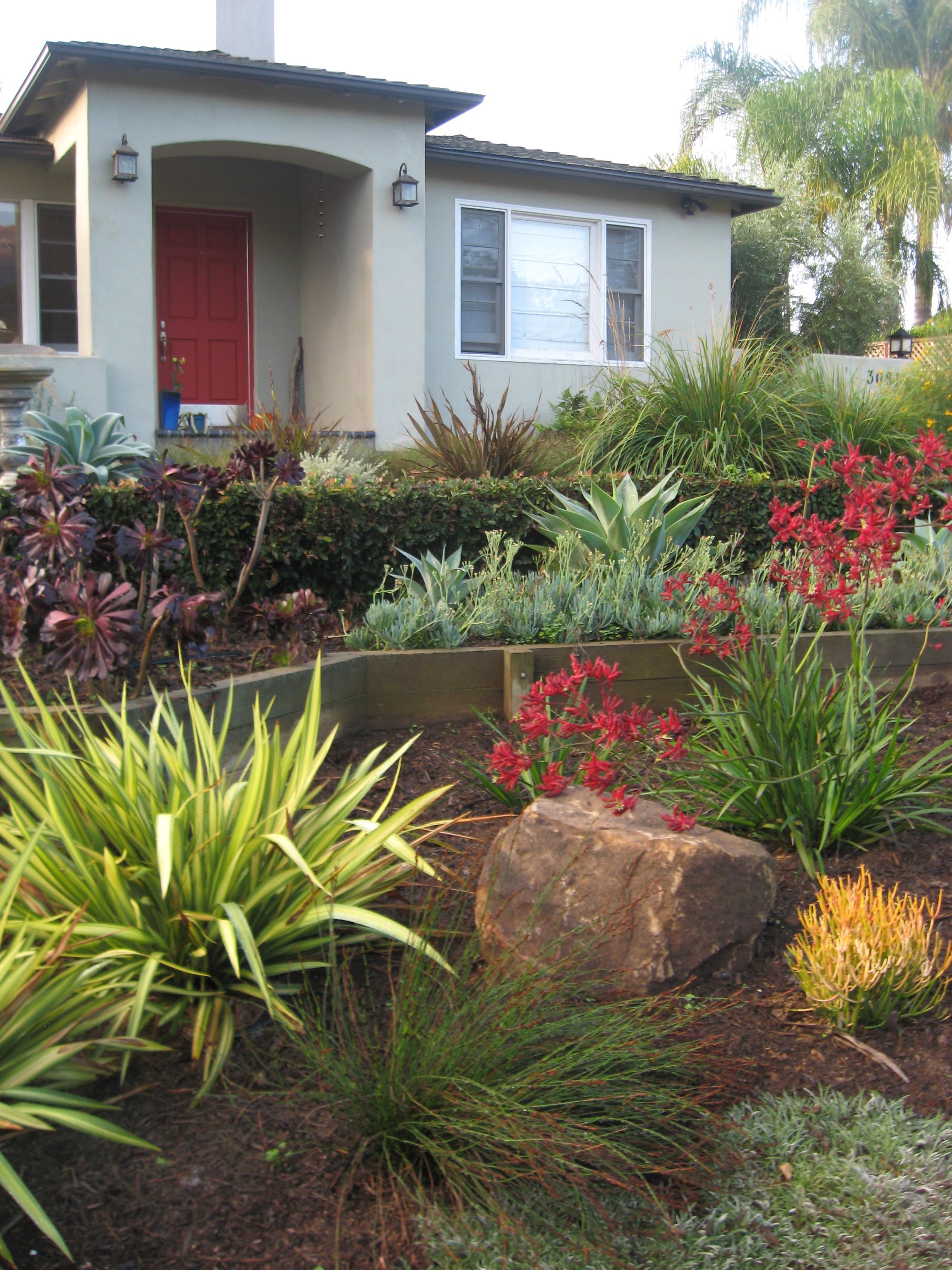 Elegant Drought tolerant Landscape Plans