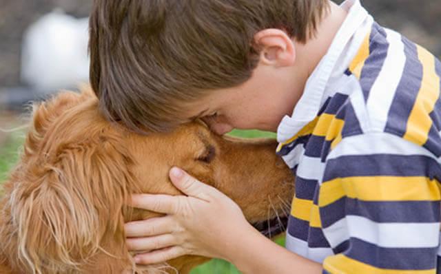 los perros son animales empaticos