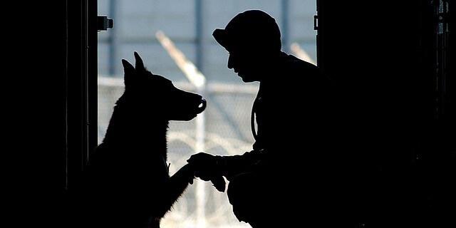 Un perro junto a su dueño