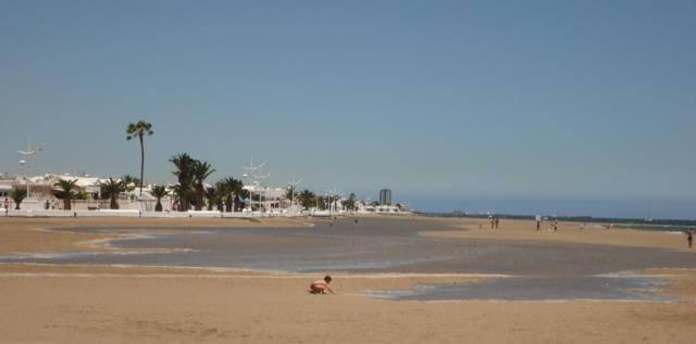 Playa de la Guacimeta (San Bartolome)