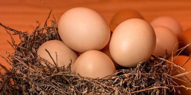 Huevos de gallina colocados en una especie de nido de pájaro.