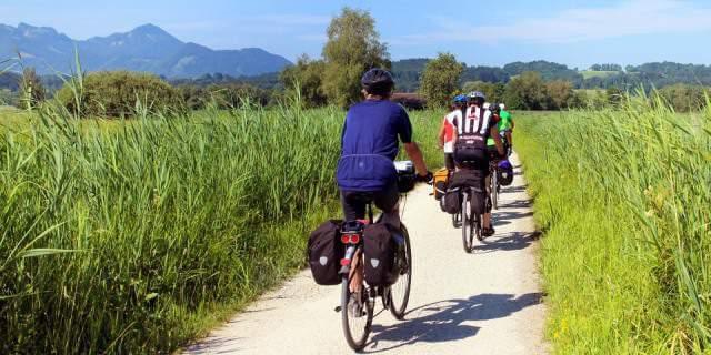 Ciclistas recorriendo el Camino de Santiago.
